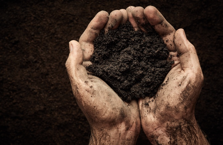 Soil converted hands cup together to hold deep brown peat loam soil crumbs. Rich in humus and organic matter, over a background of deep brown soil filling image.