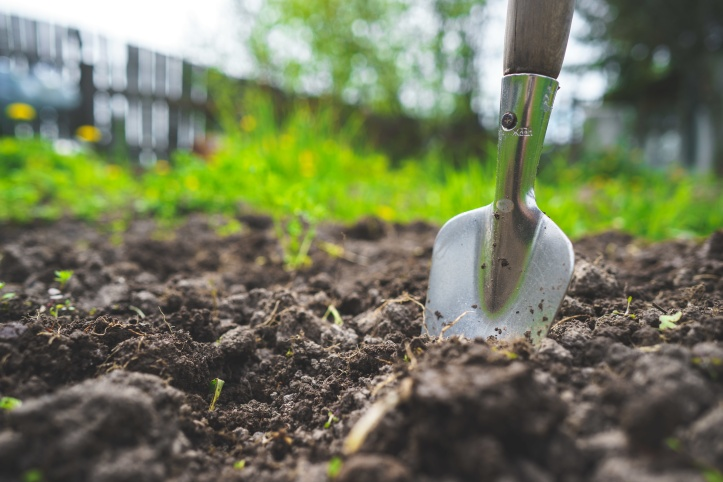 Cultivating fettle rich soil with steel hand spade. In the background greenery and a wooden paling fence are out of focus